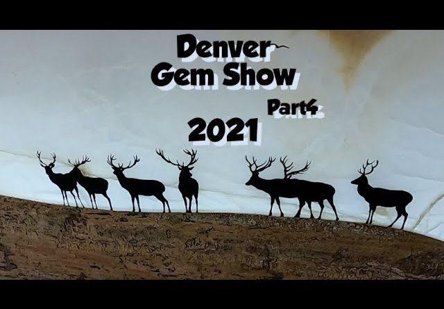 Coral, Maligano Jasper, & Hang Drums Denver Gem Show 2021 part4